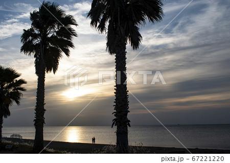 初夏の海 夜明けの光が照らし出す二人の時間 67221220