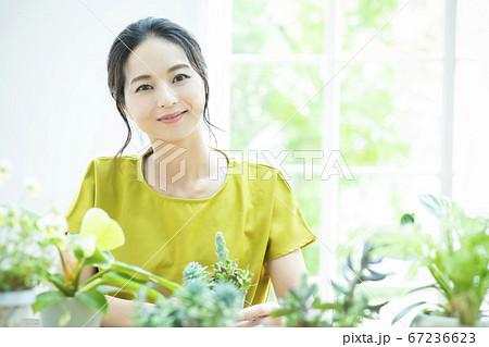 花 植木鉢 ガーデニング 67236623