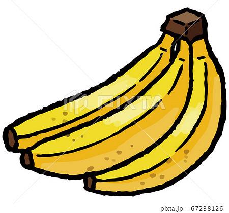 バナナの手描きベクターイラスト 67238126