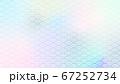 虹色青海波 67252734