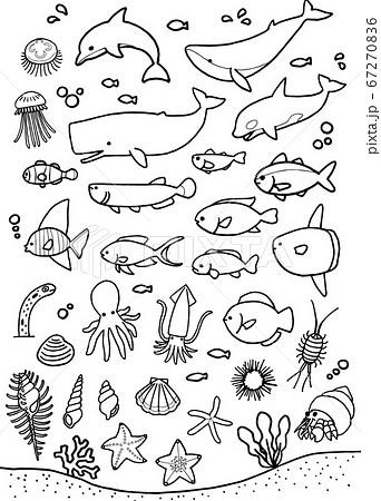 海の生き物(線画) 67270836