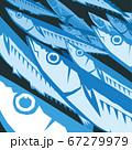 秋刀魚の群 67279979