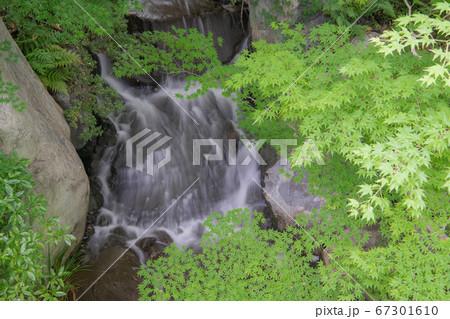 三景園の新緑と小滝の流れ(山のゾーン) 67301610