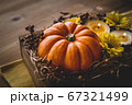 ハロウィン 秋のフラワーアレンジメント 67321499
