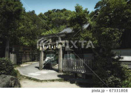 京都御苑内の九条池の中の島にある厳島神社と初夏の風景 67331808