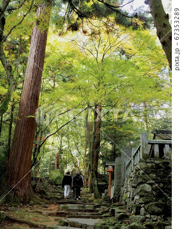 愛媛県西条市にある西山興隆寺の参拝道 67353289