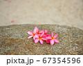 砂浜、南国、夏、海、海水浴、海外旅行のイメージ 67354596