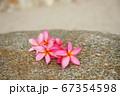 南国、海水浴、東南アジア旅行のイメージ 67354598