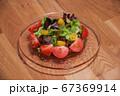 トマトとレタスの野菜サラダ 67369914