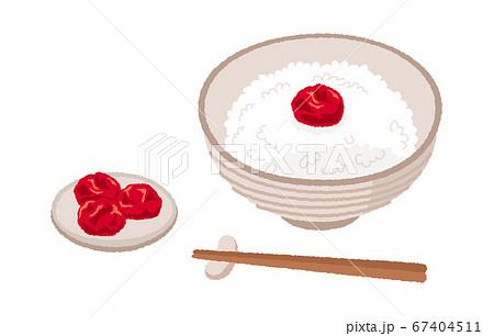 梅干しと梅干しご飯のイラスト 67404511