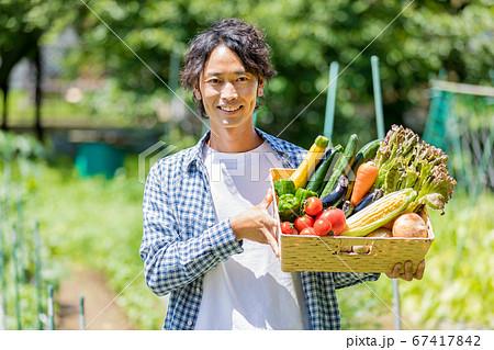 野菜を持つ男性 67417842