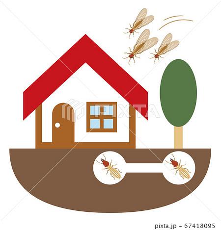 シロアリに侵入された家のイラストレーション 67418095