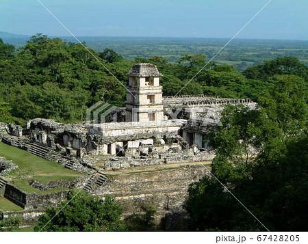 メキシコパレンケ遺跡の緑ジャングル 67428205