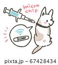 ペットのマイクロチップ装着による身元証明を促すイラスト 67428434