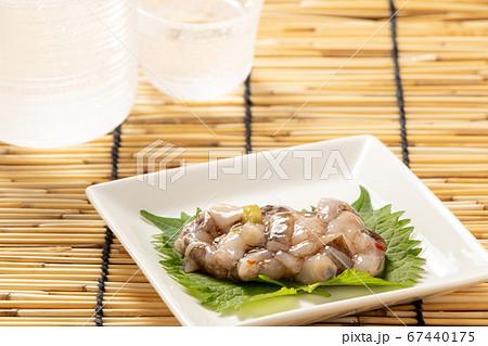 大葉(青じその葉)の上に、たこわさび。夏の日本酒(冷酒)のおつまみイメージ。 67440175