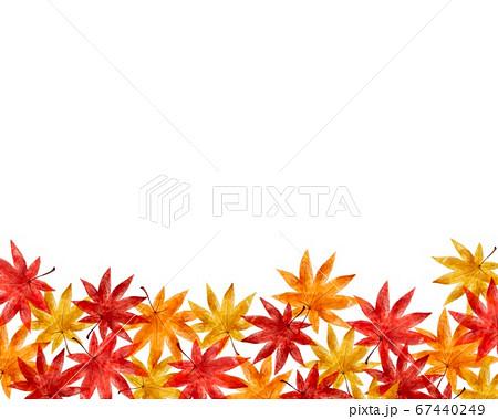 落ちた紅葉 コピースペース 水彩風イラスト 67440249