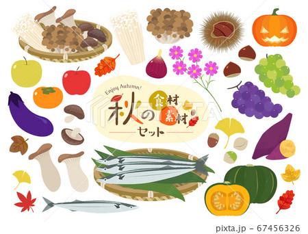 秋の食材・素材セット 67456326