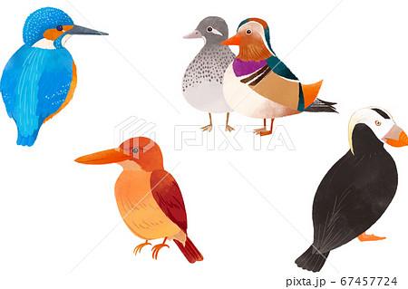 可愛い鳥たち1 67457724