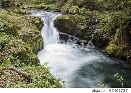 春の竜頭八重滝県立自然公園(島根県) 67461727