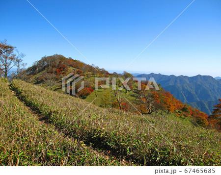 奈良県と三重県の県境に位置する桧塚奥峰の紅葉 67465685