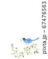 水彩絵葉書青い鳥とかずら 67476563