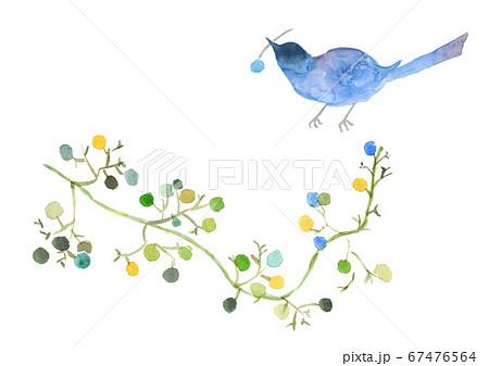 水彩絵葉書青い鳥とかずら 67476564