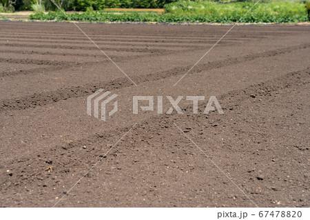 耕し整地された畑 農地 67478820