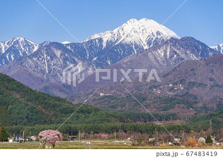 【長野県】春の安曇野から望む常念岳と桜 67483419
