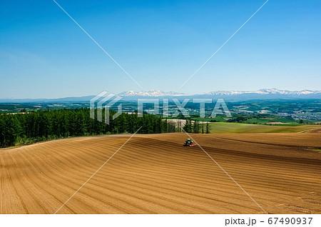 初夏を迎えた北海道の農作業風景(北海道 富良野市) 67490937