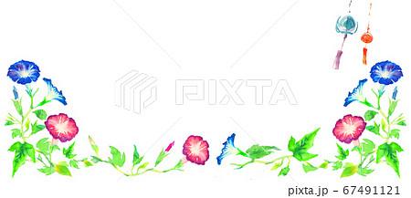 水彩で描いたアサガオのイラスト 67491121
