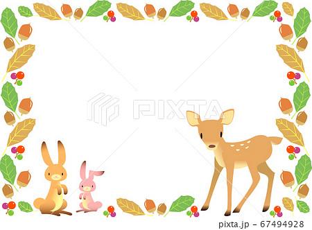 秋イメージの動物とドングリのフレーム 67494928