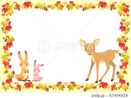 秋イメージの動物とツタのフレーム 67494929