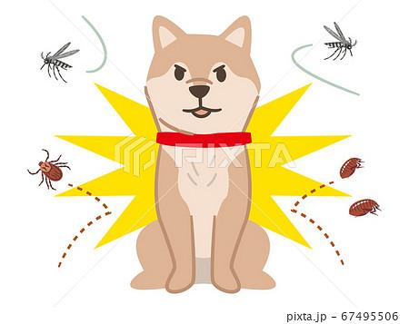 害虫を跳ね除ける犬 67495506