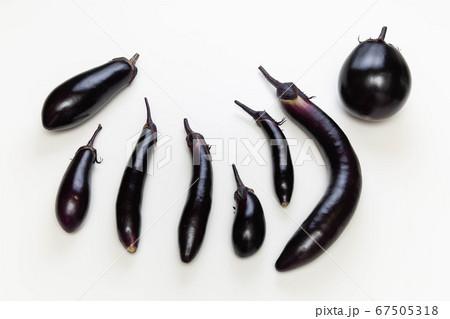 並べた色々な形のなす 夏が旬の野菜 67505318