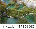 クロアチアにあるプリトヴィツェ湖群国立公園 67506083