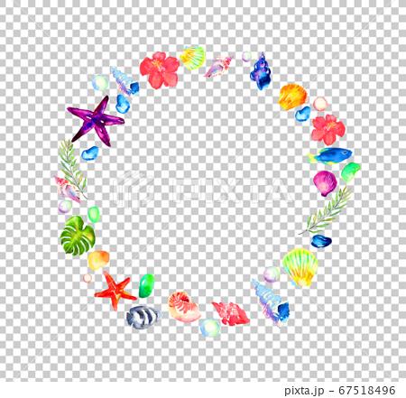 白い背景に水彩で描いた貝殻のフレーム 67518496