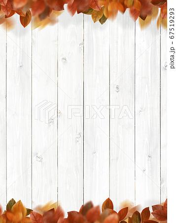 白い木目のテクスチャと紅葉した葉っぱ 67519293