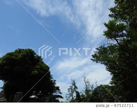 空!。。優しい雲の風景!!。。癒されます!!(笑い)。。。 67522711