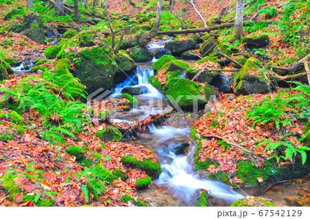 薄衣の滝付近、水の流れる風景 岩手県花巻市 67542129