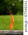 夏の公園に色水入れたガラス瓶が落ちる瞬間 67546241