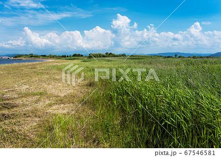 爽やかな中海 飯梨川河口の風景 清潔感のある癒やし写真 67546581