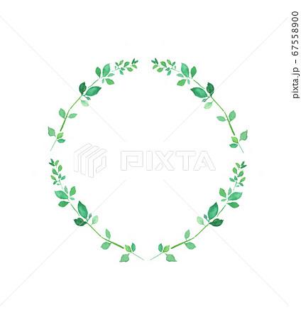 水彩で描いた円形の植物のフレーム 67558900