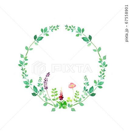 水彩で描いた円形の植物のフレーム 67558901