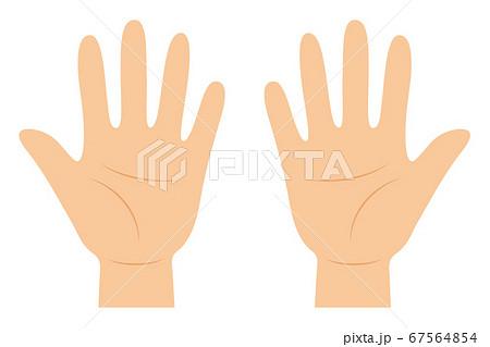 手の平のベクターイラスト(主線なし) 67564854