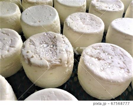 フランスのチーズ シェーブルBIO 67568777