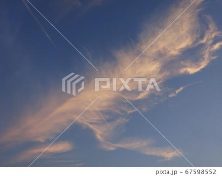 夕日で淡いオレンジに染まった鳥の羽のような雲 67598552