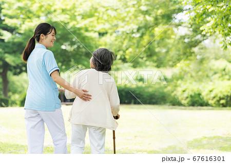 屋外でリハビリをするシニア女性と介護士の後ろ姿 67616301