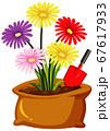 Colorful flowers in brown bag on white background 67617933