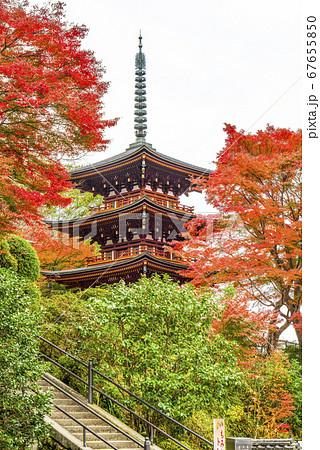 奈良 秋の岡寺の三重宝塔 67655850