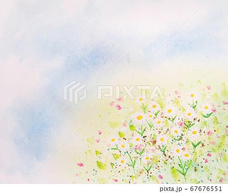 花畑 67676551